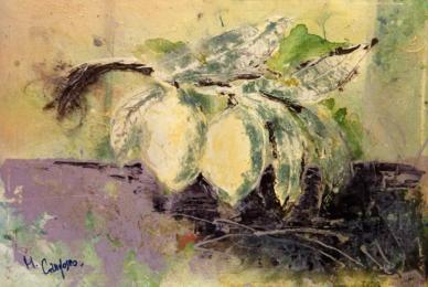Maurizio Camposeo artista visivo Vicenza - Limoni